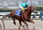 Zayat Stables' Eskendereya likely solidified himself as the horse to beat in next month's Kentucky Derby Presented by Yum Brands (gr. I) by romping past five overmatched rivals in the $750,000 Wood Memorial (gr. I)  April 3 at Aqueduct in a dominating 9 3/4-length victory.