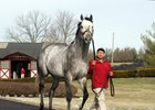 Into the Gray Brings Graydar First Winner
