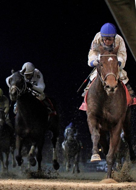 Molly Morgan took charge in the stretch and cruised to a clear victory over Street Girl in the 2014 Grade II $237,510 Chilukki Stakes for fillies and mares at Churchill Downs.