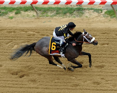 Oxbow with Gary Stevens up win the 138th Preakness Stakes at Pimlico on May 18, 2013.