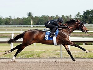 Smart Strike Filly Brings $700,000 at F-T