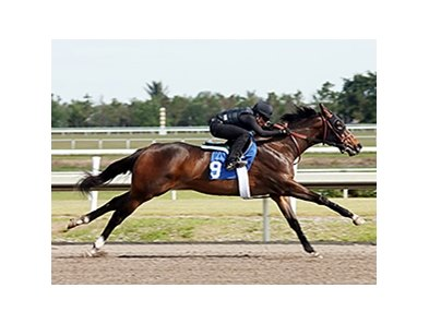 Hip 19, a Smart Strike filly, fetched the highest price so far at the Fasig-Tipton Florida select 2-year-olds in training sale.