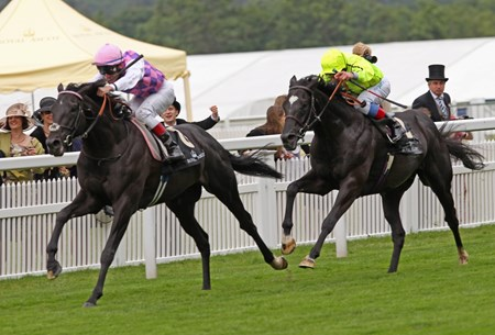The Hardwike Stakes won by Thomas Chippendale and Johnny Murtagh, with Dandino in second place, June 22, 2013.