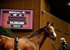 Mr. Besilu sold for $4.2 million at the 2010 Keeneland September yearling sale.
