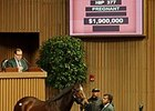 Peace Preserver was purchased for $1.9 million Nov. 5 at the Keeneland November breeding stock sale.
