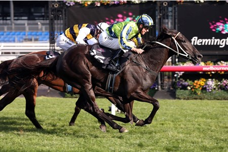 New Zealand mare Lucia Valentina stamped herself the favorite for the Oct. 18 Caulfield Cup (Aus-I) with victory in the Turnbull Stakes (Aus-I) at Flemington in Australia this weekend.