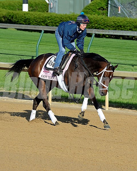 Caption: Got Lucky with Amy Mulen