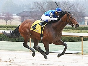 The Big Beast wins at Oaklawn Park March 1, 2015.