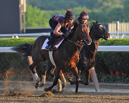 Kentucky Derby winner Orb (outside) works with stablemate Hymn Book Sunday morning at Belmont....© 2013 Rick Samuels/The Blood-Horse
