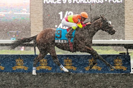 Jockey Luis Contreras aboard Go Blue Or Go Home captures the Grade II Highlander Stakes in the pouring rain at Woodbine Racetrack in Toronto, Ontario.