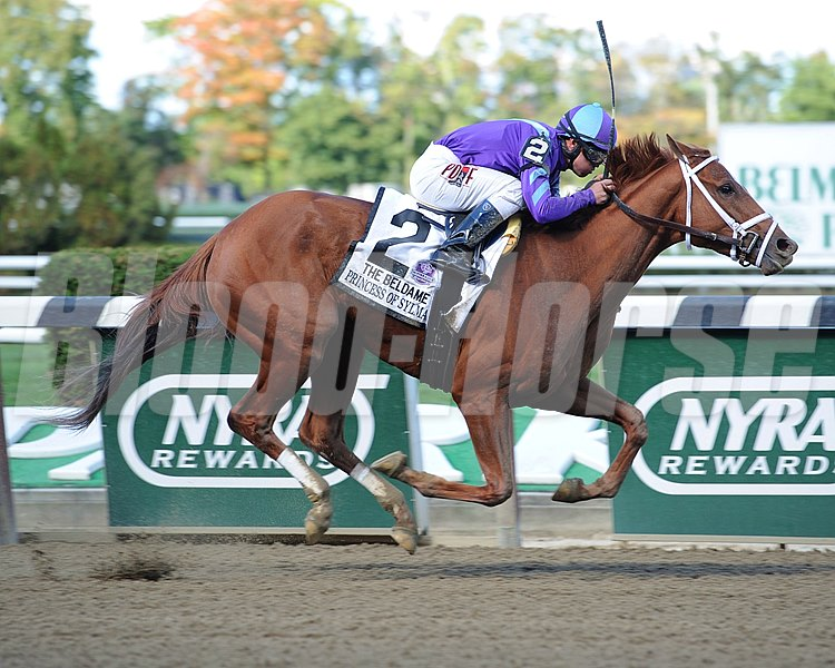Princess of Sylmar wins the Beldame Invitational Stakes (gr. 1) Jockey: Javier castellano BELMONT PARK, Elmont, NY Purse: $400,000 Date: September 28, 2013 Class: Grade I TV: Age: 3YO&UP Fillies and Mares Race: 5 Distance: 1 1/8 miles Photo by: Adam Coglianese/NYRA