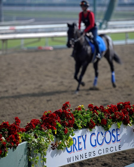 Caption:  sponsorship signage with Grey Goose