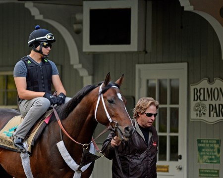 Caption: Dallas Stewart leads Commanding Curve into paddock