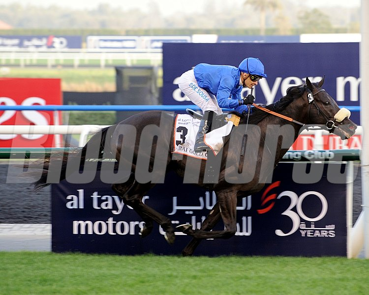Cavalryman winning the Dubai Gold Cup.