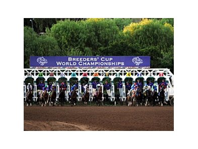The start of the Breeders' Cup Classic.