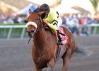Racing with lasix for the first time and receiving a six-to-eight pound edge from most of his rivals, Quality Road stayed right on the heels of pacesetter This Ones for Phil in the one-mile contest for 3-year-olds. The son of Elusive Quality  inched closer to the leader when they rounded the turn and then took over at the top of the lane under John Velazquez. He extended his advantage in upper stretch and was never challenged while stopping the clock in 1:35.01 on the fast main track.