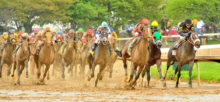 The Kentucky Derby field coming to the top of the stretch. Photo by Rick Schmitt