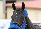 Shared Belief to Undergo Nuclear Scan