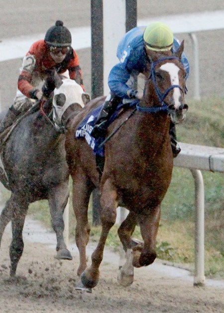 The $100,000 Louisiana Champions Day Juvenile went to Ide Be Cool, owned and trained by Henry Ray Dunn, who kept his four-race undefeated streak alive with a front-running seven-length score under jockey Chris Rosier at Fair Grounds Race Course & Slots.