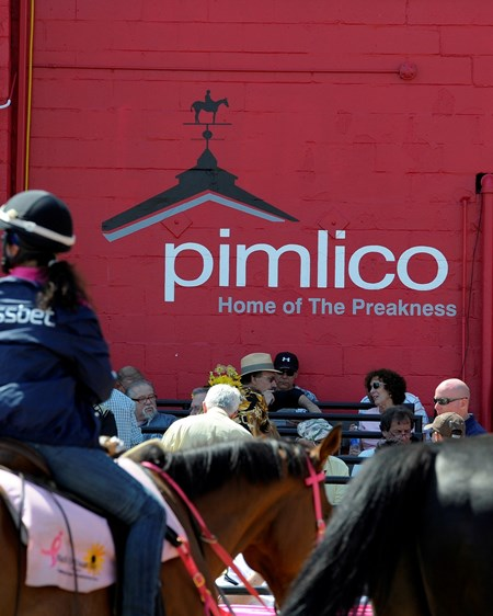 Caption: Pimlico signage