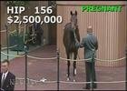 Keeneland Nov. Sale 2014 - Hip 156 - Naples Bay