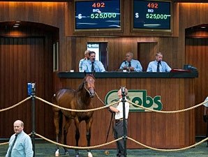 Records Fall at OBS June Sale of 2-Year-Olds