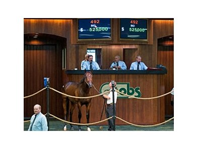 Hip No. 492 topped the sale at $525,000.