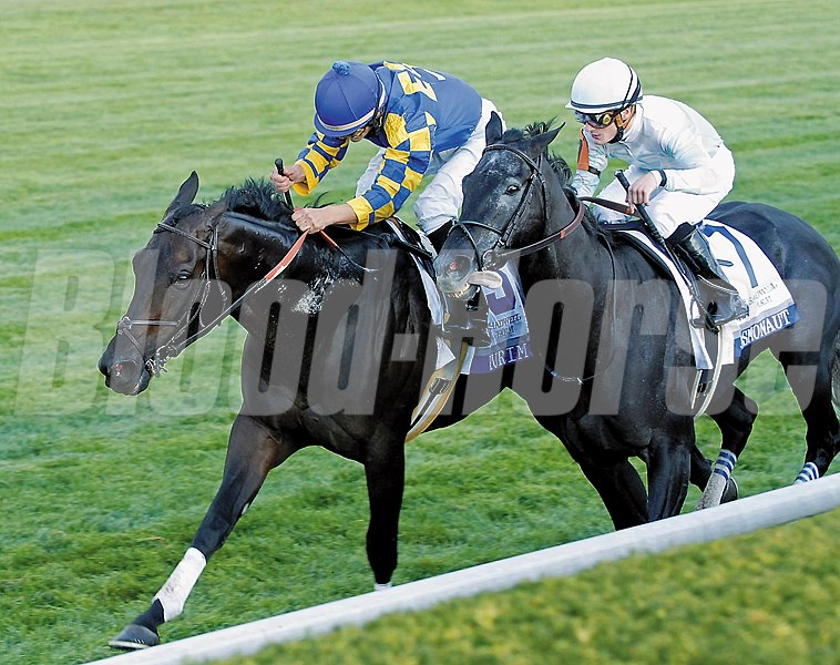 Purim is victorious in the 2007 Grade I Shadwell Turf Mile at Keeneland.