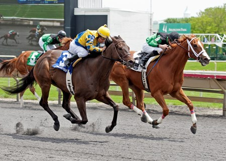 Sweet Luca and jockey Eduardo Perez win the 2013 Addison Cammack at Arlington Park.