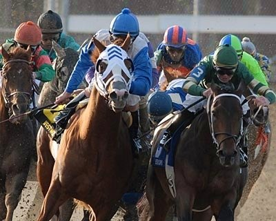 Jockey James Graham is unseated from his mount Slew's Tizzy, as Notional, purple cap, right, goes on to win the Risen Star Stakes at Fair Grounds in New Orleans.