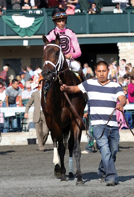 Jack Milton with John Velasquez up wins the 2013 Transylvania for trainer Todd Pletcher and owner Gary Barber.