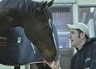 Rachel Alexandra at Rood & Riddle.