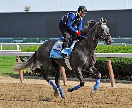 Frac Daddy at Belmont Thursday morning...