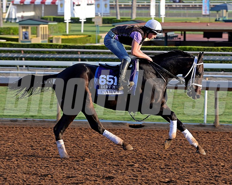 Caption:  Carve