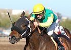 E Z Kitty takes the Kachina Handicap at Turf Paradise in Phoenix, Arizona.