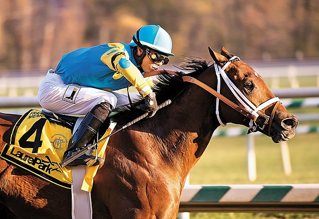 Zayat Stables' Zee Bros pulled a 29-1 upset in the $350,000 Frank J. De Francis Memorial Dash Stakes at Laurel Park after taking charge off the far turn and sprinting clear in the stretch.