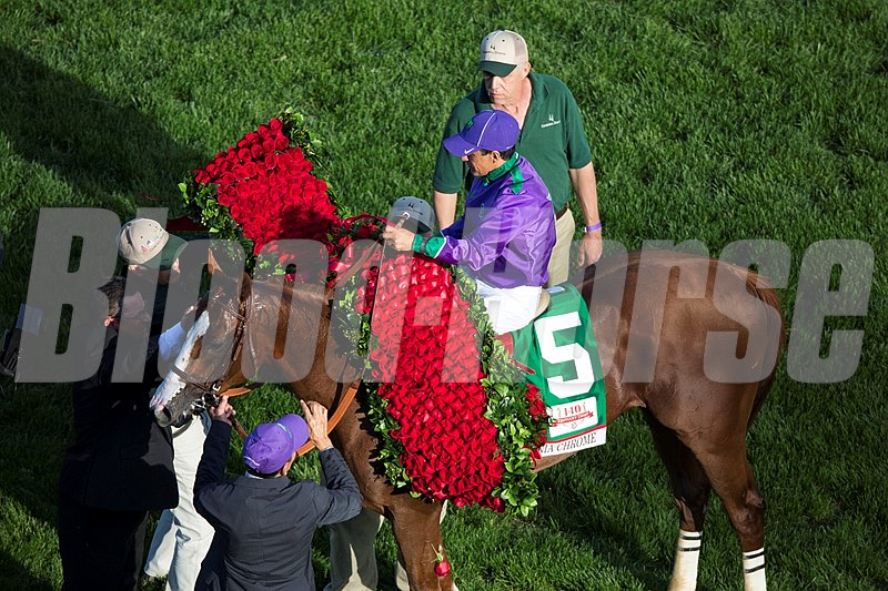 The blanket of roses is draped over Kentucky Derby winner California Chrome.