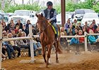 The April 26 Thoroughbreds For All event featured 500 attendees from 22 states.