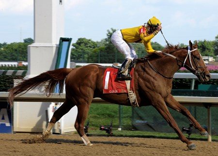 Caption:Curlin with Robby Albarado wins the Stephen Foster (gr. I) on Stephen  Foster day at Churchill Downs on June 14, 2008.