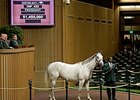 Strawberrydaiquiri brought $1.45 million Nov. 5 during the second session of the Keeneland November breeding stock sale.