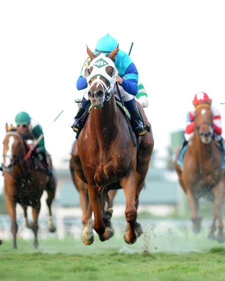 Even-money choice Baffle Me scored her third consecutive stakes triumph with a half-length tally in the $100,000 South Beach Stakes on the turf at Gulfstream Park in Florida.