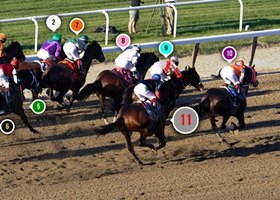 2014 Belmont Stakes Race Sequence