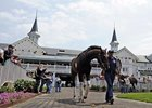 The Derby contenders begin schooling in the popular paddock area of Churchill Downs.