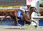 Khozan Retired to Journeyman Stud