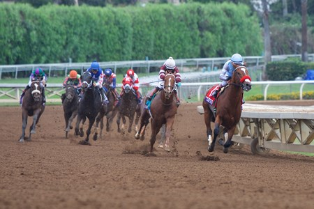 Goldencents (right) leads the way around the final turn as Tapiture follows close behind in the Grade I Breeders' Cup Dirt Mile at Santa Anita.