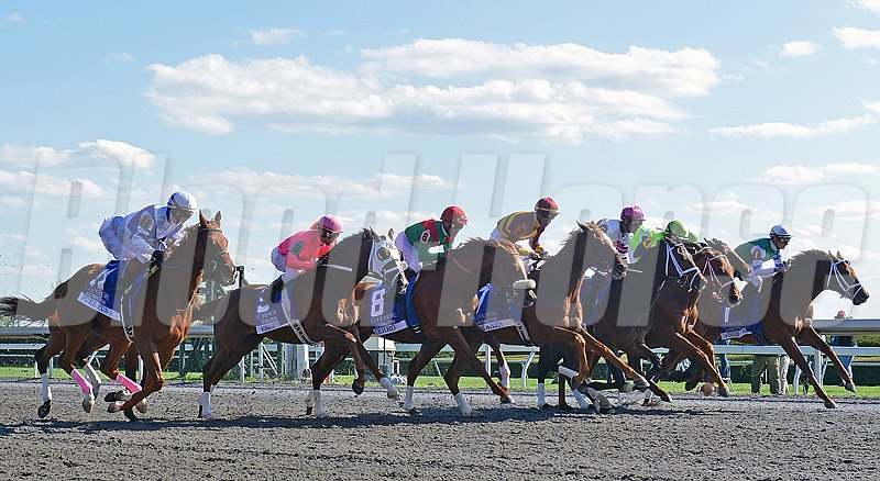 Start of the 2013 Coolmore Lexington Stakes at Keeneland Race Course in Lexington Kentucky.