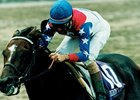 Cigar was a perfect 10 for 10 in 1995, including victory in the Classic, as he won his first Horse of the Year title. It was the third straight Classic win for jockey Jerry Bailey.