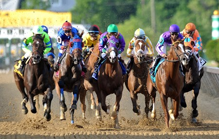 The Preakness Stakes field passes by for the first time May 17, 2014.