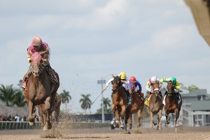 Groupie Doll wins the Grade III Hurricane Bertie Stakes at Gulfstream Park.