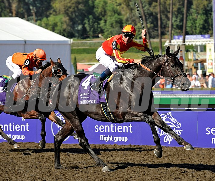 Midnight Lute and jockey Garrett Gomez fly home to become repeat champions in the 2008 Grade I Breeders Cup Sprint at Santa Anita Park.